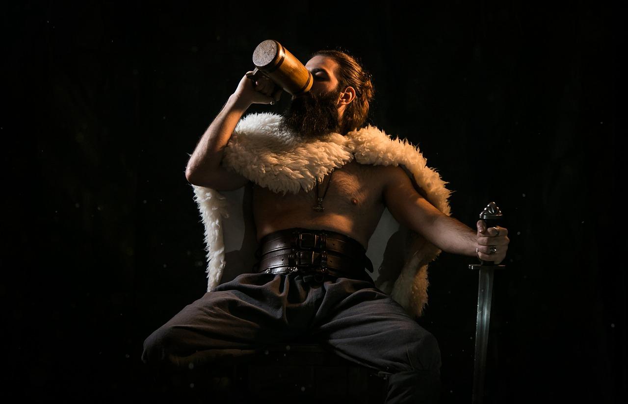 viking-5151537_1280